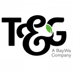 T and G Global Logo